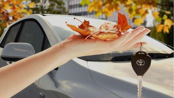 Сезонные скидки в автосалоне