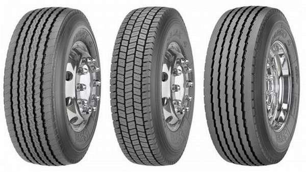 Автомобильные шины бренда Сава