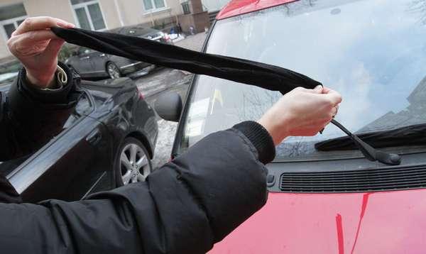 Защита автомобильных дворников
